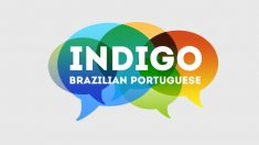 Indigo Brazilian Portuguese identity and website