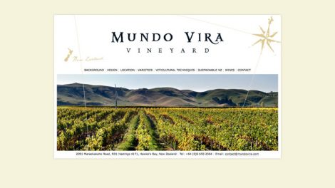Mundo Vira website